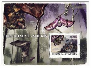 COMORES 2009 SHEET LES CHAUVES SOURIS BATS MORCEGOS WILDLIFE WWF cm9120b