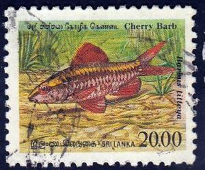 Sri Lanka #980 Cherry Barb Fish, used. PM