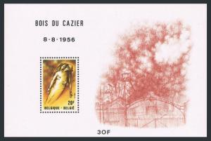 Belgium 1080 sheet,MNH.Michel 2070 Bl.51. Pieta,by Ben Genaux,1981.