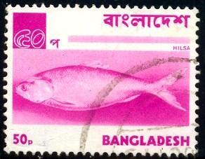 Fish, Hilsa, Bangladesh stamp SC#48 used