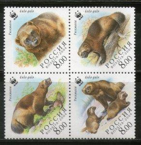 Russia MNH Block 6857 Bears WWF 2004