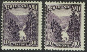 NEWFOUNDLAND 1923 PICTORIAL ISSUE 10C BOTH SHADES