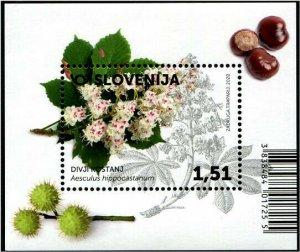 HERRICKSTAMP NEW ISSUES SLOVENIA Flora 2020 Hydrangeas S/S