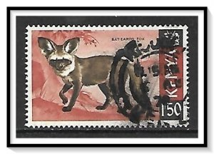 Kenya #31 Bat-eared Fox Used
