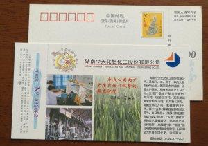 Calcium superphosphate Production workshop,rice,CN 00 chemical fertilizers PSC