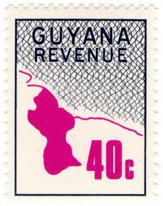 (I.B) British Guiana (Guyana) Revenue : Duty Stamp 40c