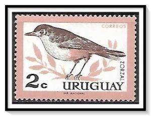 Uruguay #695 Birds MNH