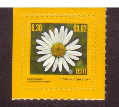 Estonia Sc560 2007 flower Euro added stamp NH