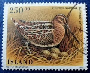 Iceland Birds Stamp Scott # 809 Used (I726)