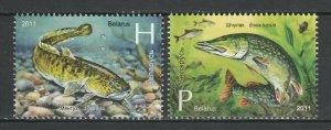 Belarus 2011 Fauna Fish 2 MNH stamps