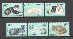 Nicaragua MNH Set Of 6 Domestic Cats Fauna 1999