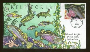 2009 Monterey California - Kelp Forest - Yellowtail Rockfish - Collins FDC