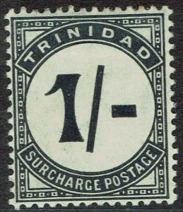 TRINIDAD 1905 POSTAGE DUE 1/- VARIETY UPRIGHT STROKE WMK MULTI CROWN CA