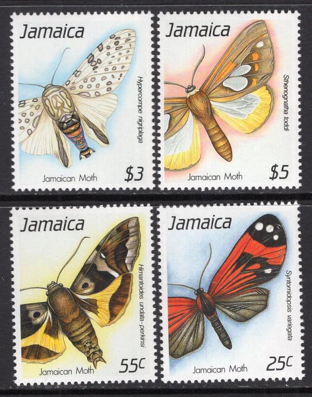 Butterflies 713