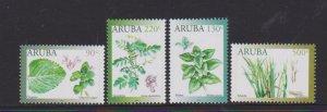 Aruba 2019 MEDICINAL PLANTS 4v MNH
