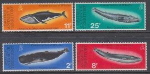 British Antarctic Territory 64-67 Whales MNH VF