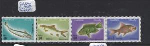PAKISTAN  (PP2412B)  FISH SC 354A   MNH