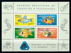 [99693] Brazil 1969 Marine Life Sea shells Fish Sea horse Imperf. Sheet MNH