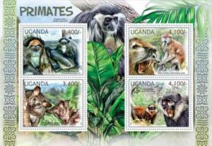 Uganda - Primates, Monkey Angola colobus, Brown Greater Galago 21D-013