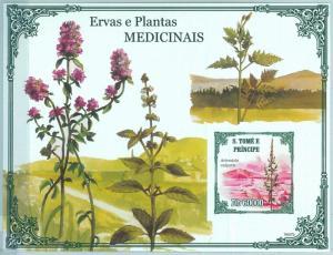 1595 - S TOME & PRINCIPE, ERROR, 2009, IMPERF SHEET: Plants, Herbs, Medicine