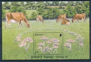 [57781] Jersey 2005 Mushrooms Pilze Champignons Cows MNH Sheet