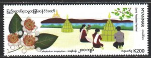 Myanmar. 2019. Bay tree, make oil from seeds. MNH.