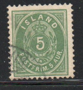 Iceland  Sc 24 1896 5 aur green stamp used