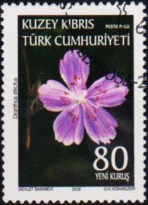Cyprus(Turkish). 2008 80k Fine Used