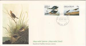 Cayes of Belize 1985 FDC Scott #22, #23 Blue-winged teal, Semipalmated sandpi...