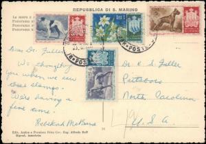 SAN MARINO 1958 MULTI STAMP ( DOGS ) ON POSTCARD TO UNITED STATES