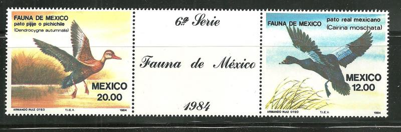 MEXICO Scott 1346-47=1347a MNH** 1984  Bird pair with label