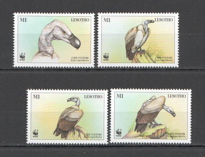 A0620 LESOTHO WWF FAUNA BIRDS CAPE VULTURES SET MNH