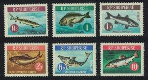 Albania Fish 6v SG#804-809
