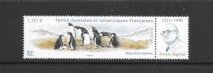 PENGUINS- FRENCH SOUTHERN ANTARCTIC TERRITORIES #447  MNH