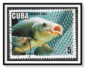 Caribbean #4159 Aquaculture CTO