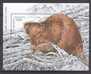 Belarus 1996 Fauna Animals Beaver MNH stamp Block