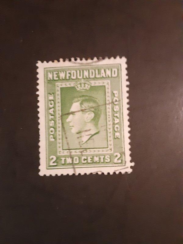 ^Newfoundland #245                      Used