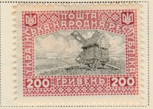 UKRAINE 1919 200g Very Fine MH* A8P16F41