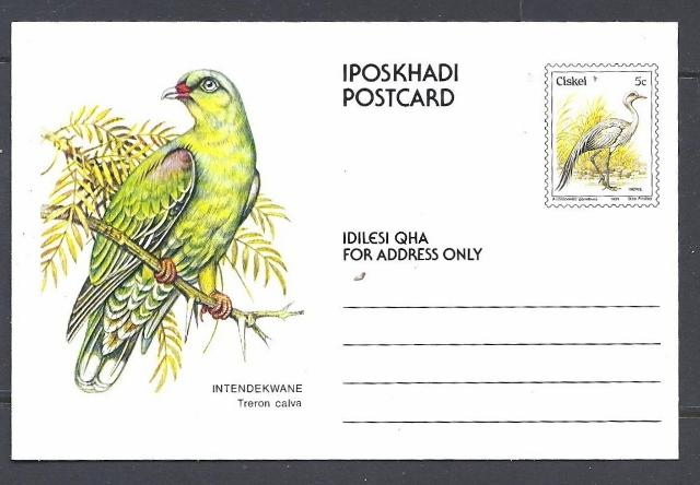 Ciskei Post Card Mint.  Birds