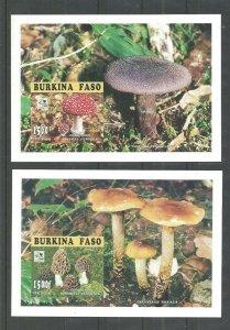 1995 Boy Scout Burkina Faso 2 SS 18th World Jamboree mushrooms fungi Imperf