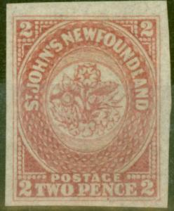 Newfoundland 1862 2d Rose-Lake SG17 V.F Unused with 1963 L.Miro Certificate
