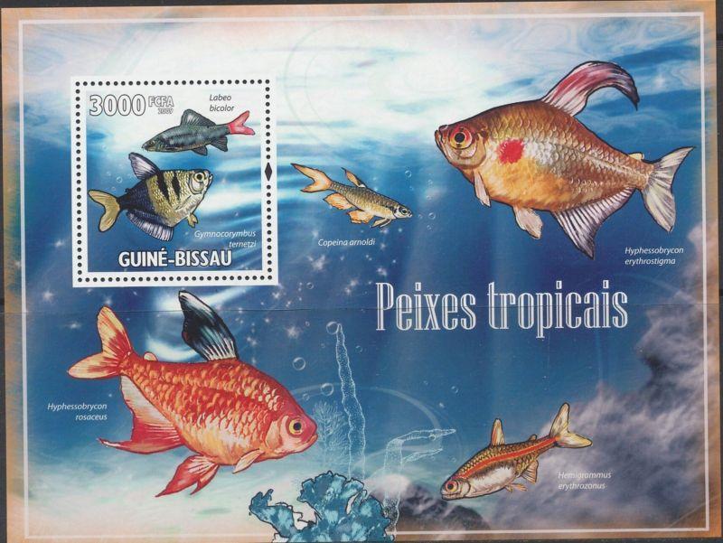 Guinea-Bissau MNH S/S Tropical Fish 2009