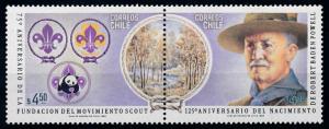[66741] Chile 1982 Scouting Pfadfinder Panda Pair MNH