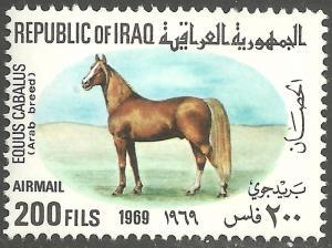 IRAQ SCOTT C31