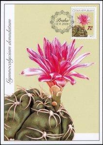 Czech Republic. 2006. Cacti. Gymnocalycium denudatum (Mint) Maximum Card