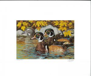 MINNESOTA #8 1984 STATE DUCK STAMP PRINT WOOD DUCKS by Thomas Gross
