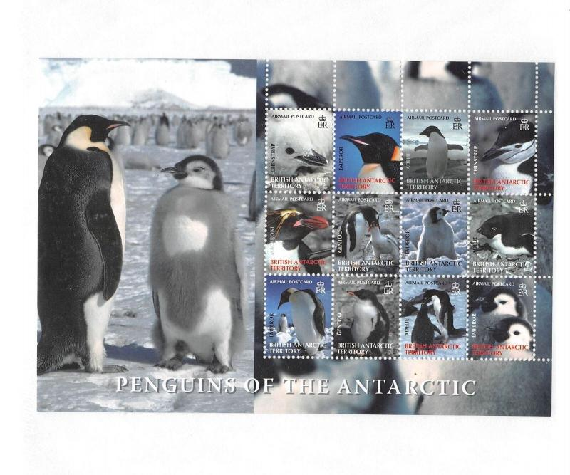 Lot of 12 British Antarctic Territory MNH Mint Never Hinged Stamps #C2 #140351 X