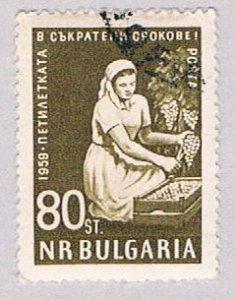 Bulgaria Nurse 80 (AP117507)