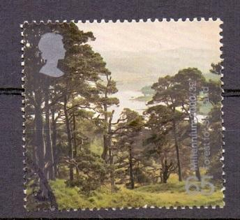 Great Britain 2000 used milennium projects 8th set 65p  forest Doire Dach     #