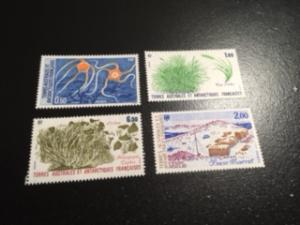 french southern & antarctic sc 125-129 MNH